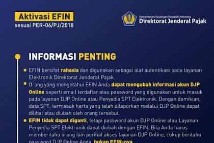 Informasi Penting EFIN Yang Perlu Diketahui