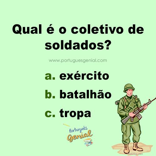 Coletivo de soldado - Qual é o coletivo de soldados?