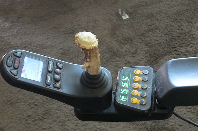 a modified joystick on a wheelchair sports a knobby piece of antler