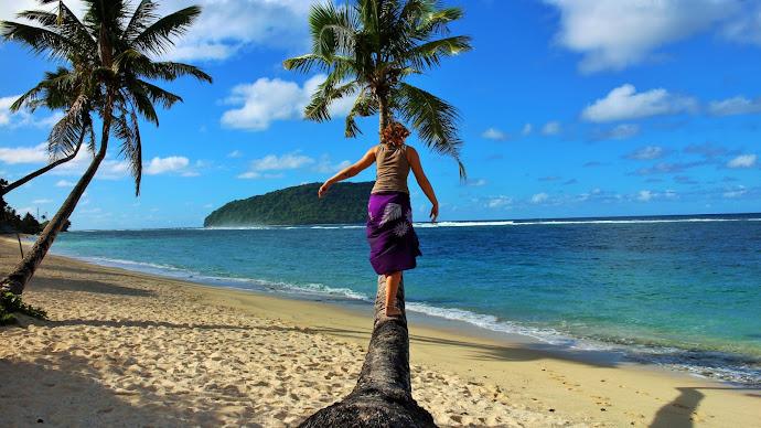 Wallpaper: My Tree in the Samoa Island