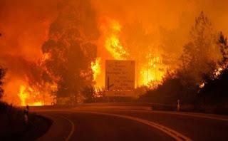 Πύρινη κόλαση σε δάσος της Πορτογαλίας! Αυξάνονται συνεχώς οι νεκροί