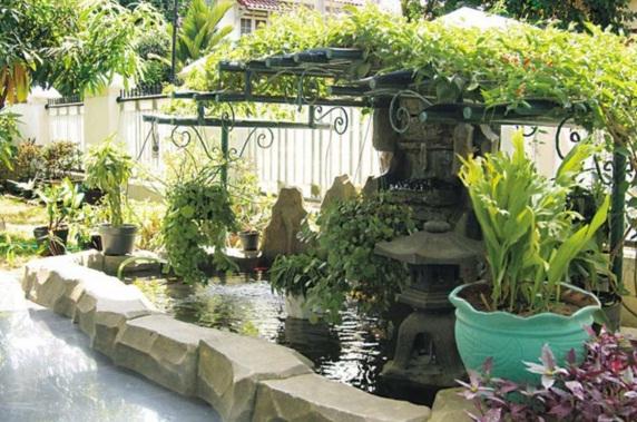 Rear garden with vintage atmosphere