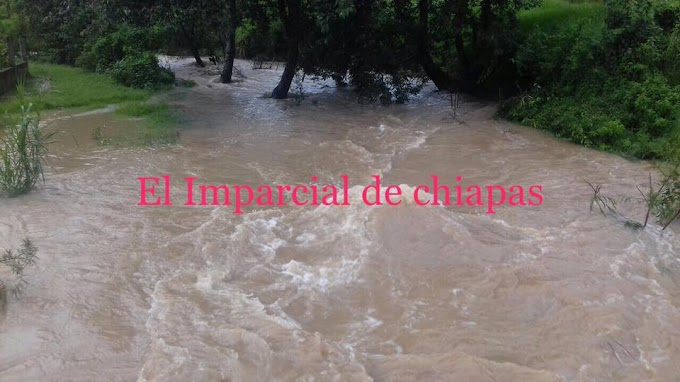 Fuertes lluvias dejan familias afectadas y daños daños a cultivo en Teopisca, Chiapas