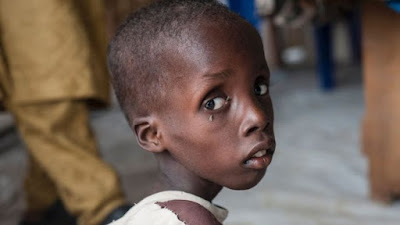 Boko Haram: Children starving, warns Unicef