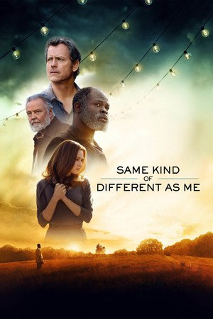 Poster Same Kind of Different as Me 2017