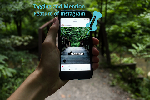 Tagging and Mention Features Of Instagram