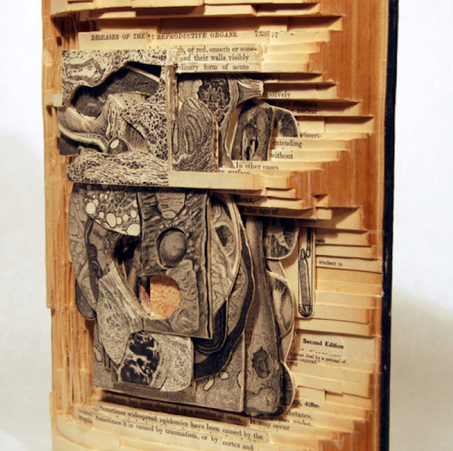 Скульптуры из книг. Brian Dettmer 10