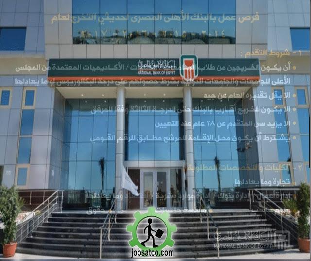 وظائف-البنك-الأهلي-المصري-2018-2019