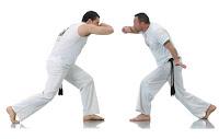 Ginga Capoeira O Espaço