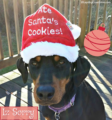 doberman rescue dog in santa hat