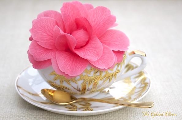 Camellia in Teacup- www.gildedbloom.com