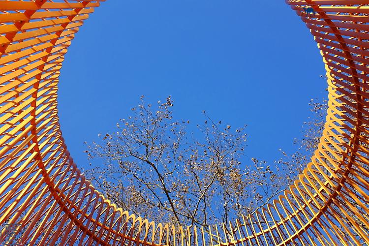 Le Chameau Bleu - New York oeuvre de Ai Wei Wei Manhattan