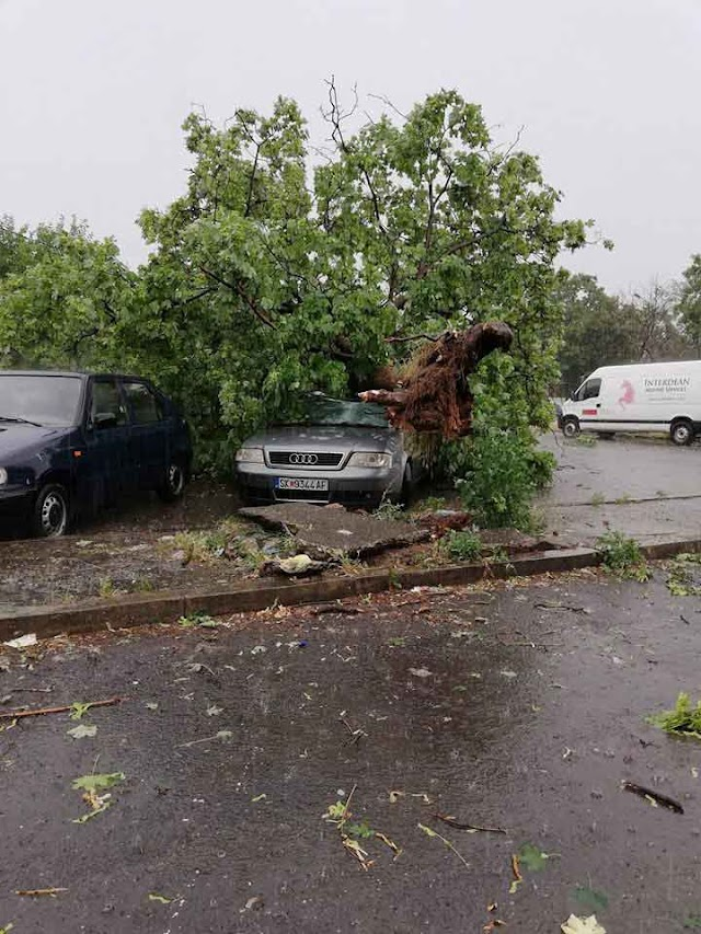 Macedonia: Skopje hit by heavy rains and strong winds