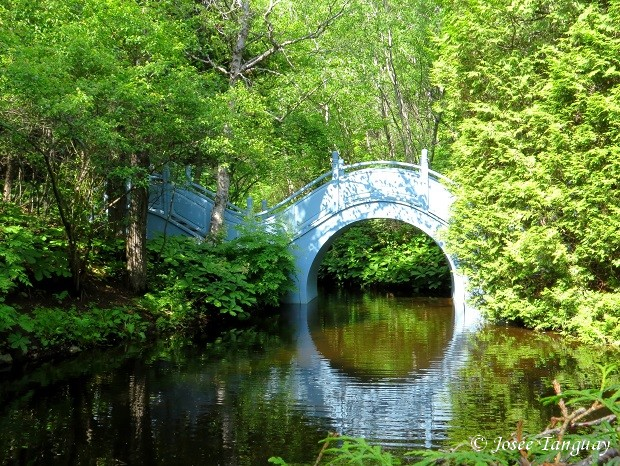 """""""un pont"""""""