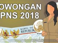 Menteri PANRB: 134 Pemda Tak Dapat Jatah Tambahan CPNS di 2018