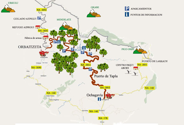 Mapa Selva de Irati