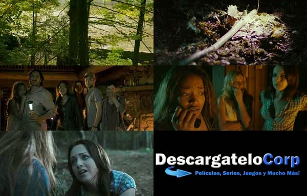 Descargar Animal DVDRip
