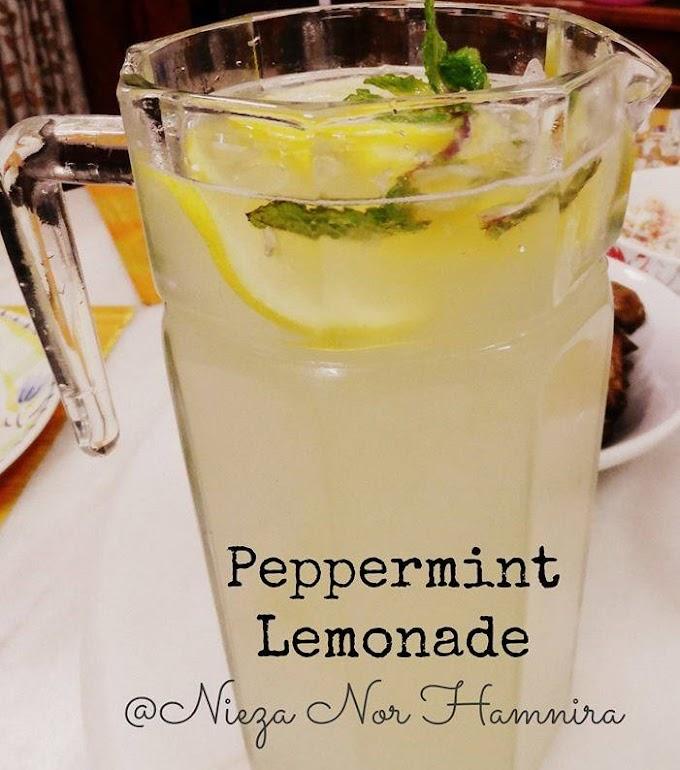 Resepi Air Lemon Pudina Untuk Berbuka : Segelas Minum Memang Tak Cukup!
