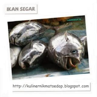 Cara Memilih Ikan Segar Untuk Di Masak