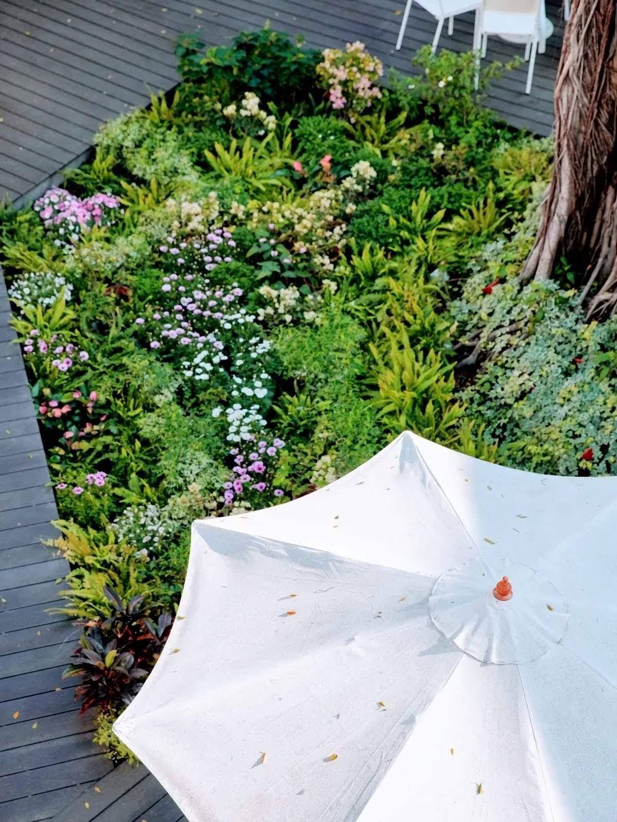 林志玲永久認養南美館1館花園|館方命名:「志玲姐姐幸福花園」