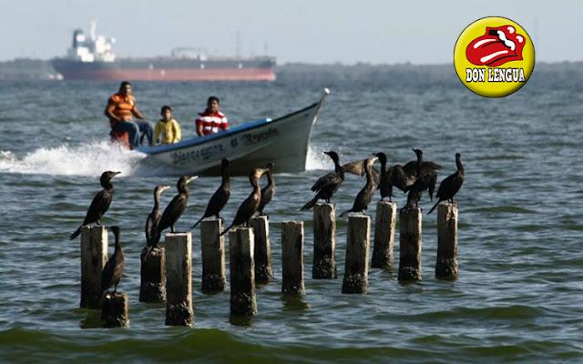 Atracaron a más de 20 pescadores y mataron a 4 en medio del lago de Maracaibo para atracarlos