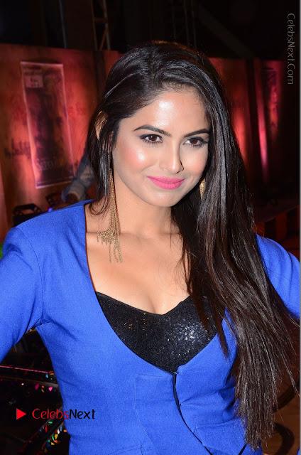 Actress Naina Ganguly Stills in Blue Dress at RGV Shiva to Vangaveeti Event  0001.JPG
