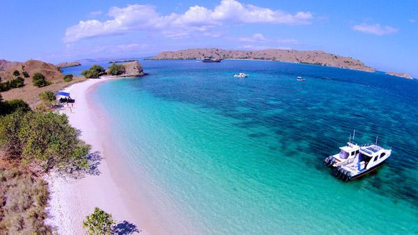 Exotic Pink Beach in Komodo Island, Indonesia