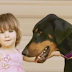 Parents Are Horrified When Their Adopted Doberman Grabs Their Daughter. But Then They Realize Why..