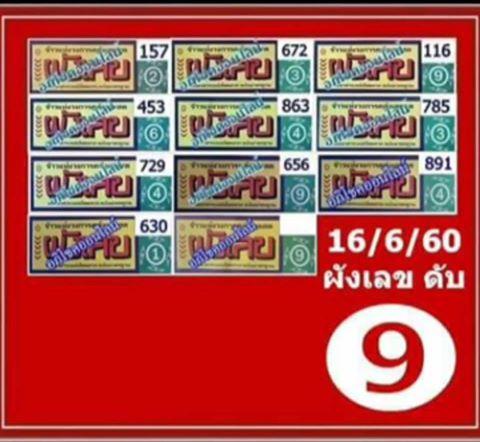 world lotto guide