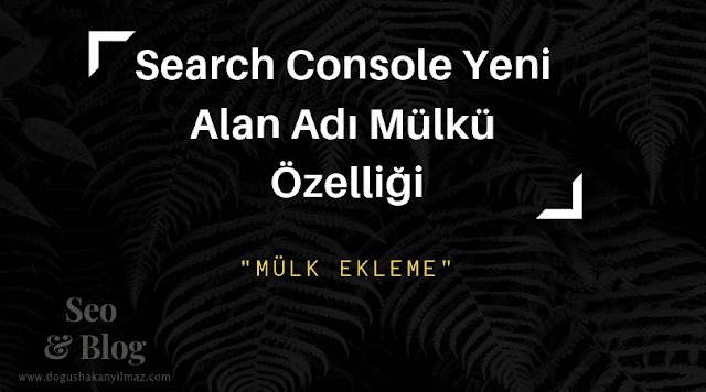 Search Console Yeni Alan Adı Mülkü Özelliği