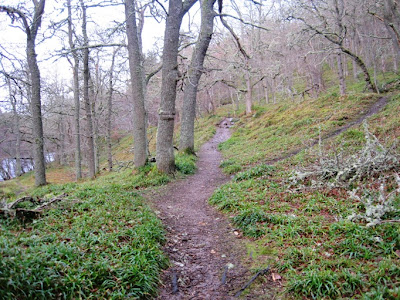 Deeside walks: the path along the railway line from Ballater by the River Dee