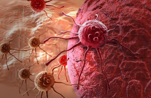 Ternyata, Ayat al-Qur'an Ini Bisa Merontokkan Sel-sel Kanker