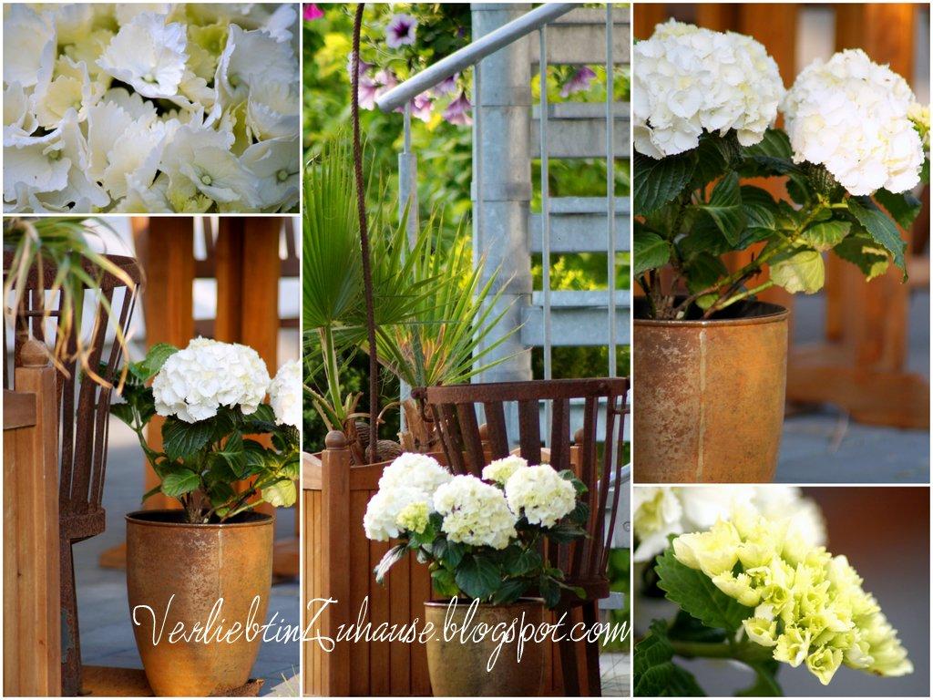 verliebt in zuhause terrassengestaltung mediterane einfl sse unter dem balkon. Black Bedroom Furniture Sets. Home Design Ideas