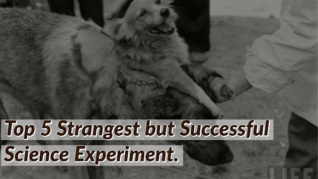 Top 5 Strangest but Successful Science Experiment.