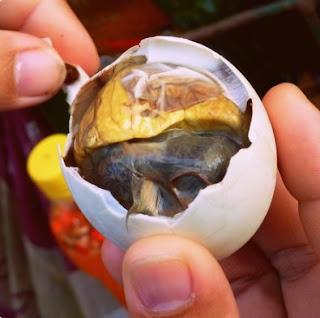 Embrio bebek Serta 5 Makanan Aneh Di Thailand