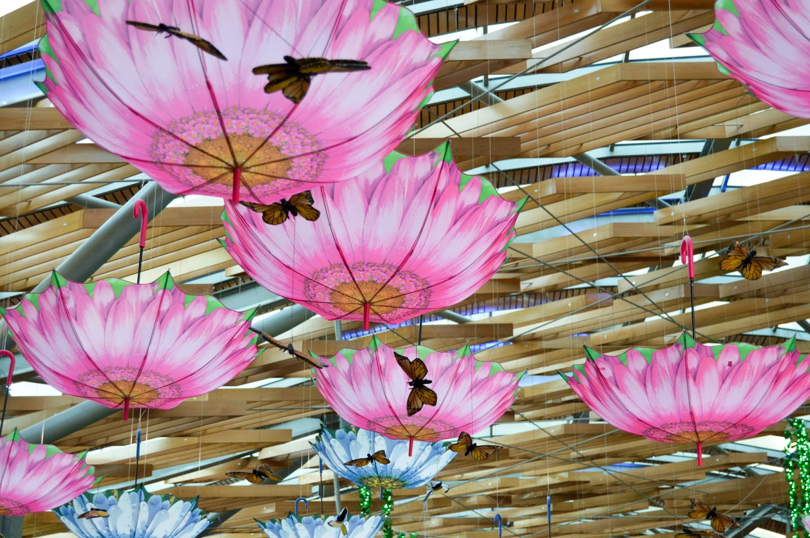 Pink & Blue Umbrellas & Butterfly Wallpapers