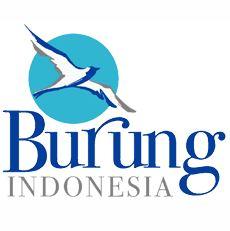 Lowongan Kerja Perhimpunan Pelestarian Burung Liar Indonesia (Burung Indonesia)