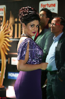 Iniya in a deep neck gown super cute beauty at IIFA Utsavam Awards press meet 27th March 2017 001.JPG
