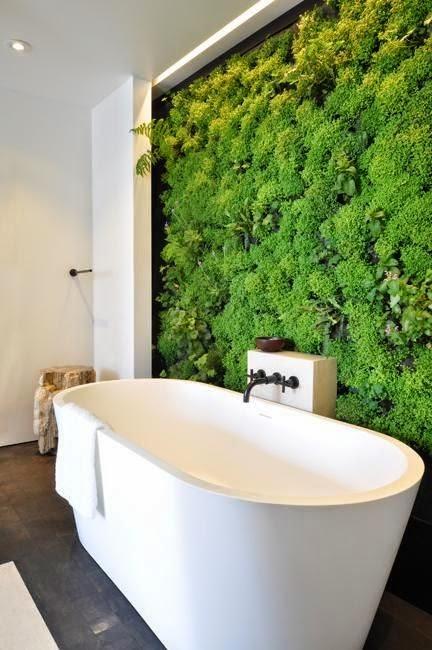 fürdőszoba és növények