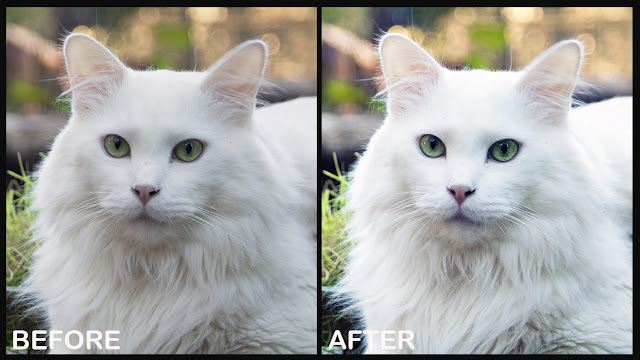 before and after action preview