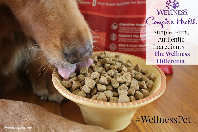 simple, pure and authentic ingredients in wellness complete health dog food