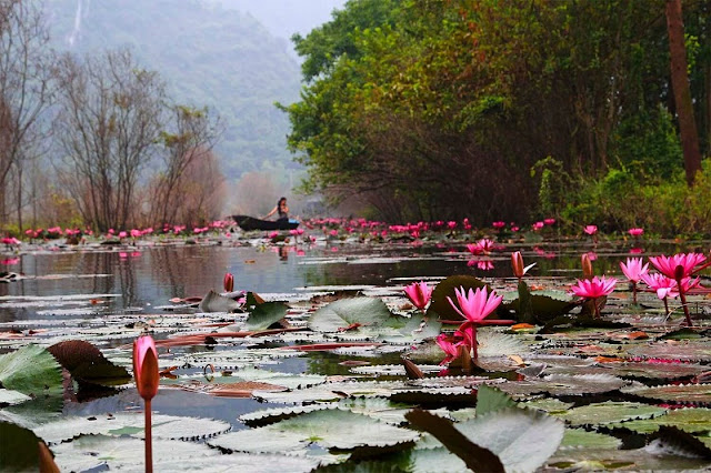Vietnam's most  beautifull stream in Autumn 2