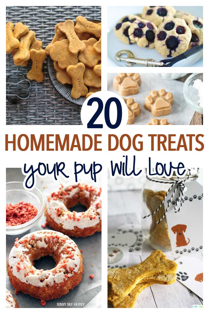 Spoil your dog with healthy and easy homemade dog treats! Dogs love these dog treat recipes and you will love the simple, healthy ingredients. Try one or all of these today for a wholesome treat your dog will love! Dog Treats | Dog Cookies | Dog Recipes | Dog DIY | Dog Food | Pets