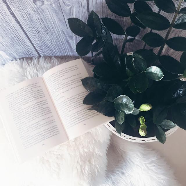 GrinseStern, Booklove, buchtipp, bücherliste, bücher, book, grinsestern feel good