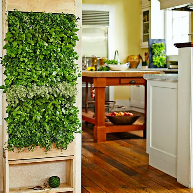 Best Ways To Grow Herbs Indoors - Freestanding Wall Garden