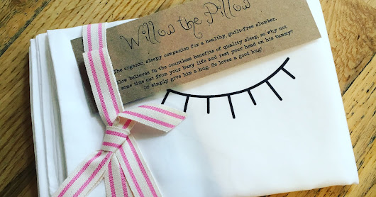 Willow the Pillow: A Review