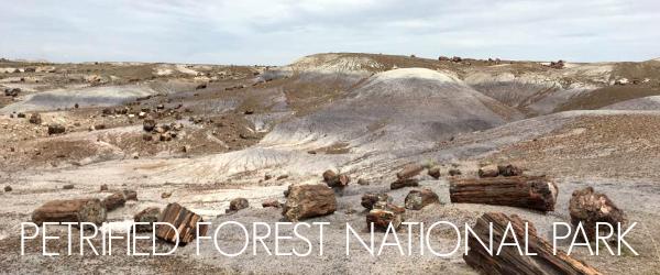 http://www.awayshewentblog.com/2017/04/exploring-petrified-forest-national.html