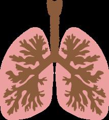 Gejala dan Tanda Penyakit Kanker Paru-Paru ~ Info, Artikel ...