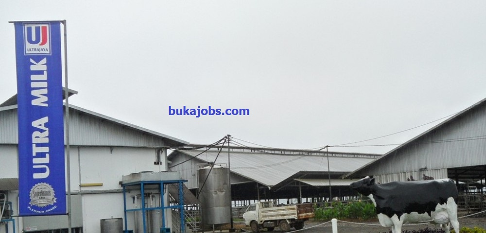Lowongan Kerja PT Ultrajaya Milk Industry & Trading Company, Tbk 2019