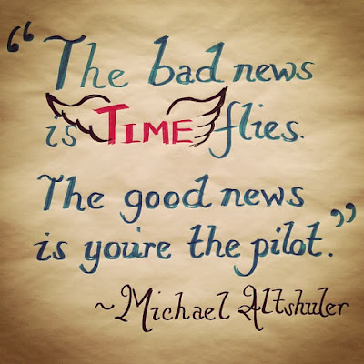 time-flies-you-are-pilot-whatsapp-best-dp